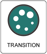 Transition Button